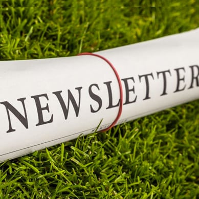 CommNETs Newsletters